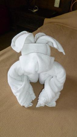 Petit Lafitte: die täglichen Handtücher