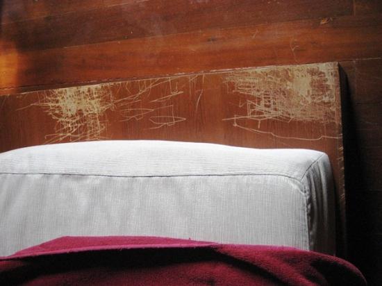 Zara Beach Resort: Flächendeckend Kratzer am Sofa