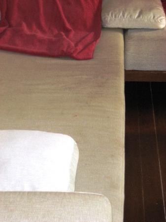 Zara Beach Resort: Grauschimmel auf dem Sofa
