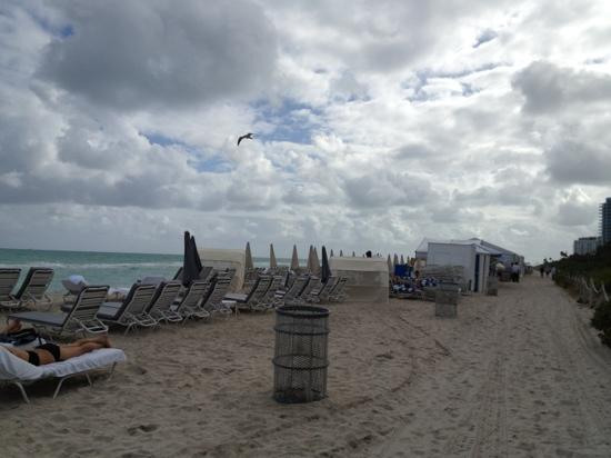 Four Points by Sheraton Miami Beach: the beach access
