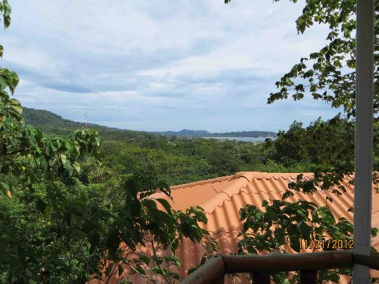 Lodge Las Ranas: View from balcony