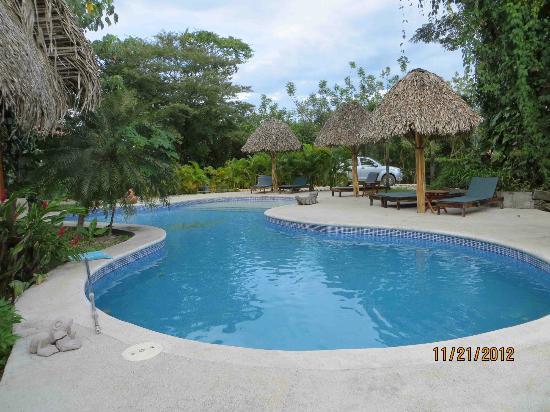 Lodge Las Ranas: Pool 