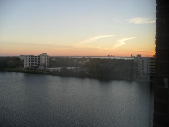 ‪‪Westin Tampa Harbour Island‬: View from our room (Basic, with King bed)