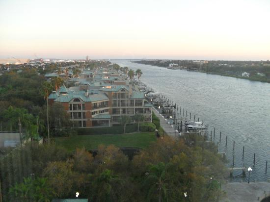 Westin Tampa Harbour Island: View from our room (Basic, with King bed)