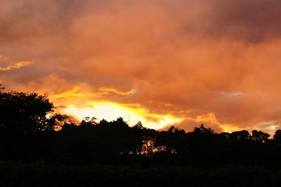 Monteverde Rustic Lodge: Constant wind and mist brings spetacular sunsets