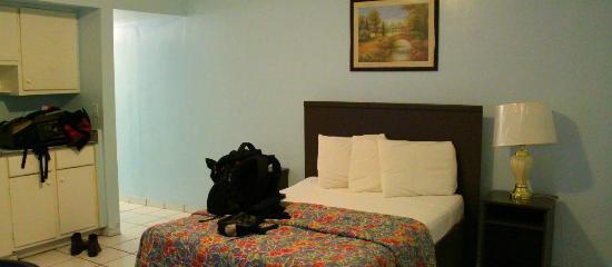 Parkway Inn Airport Motel: La habitación >.<