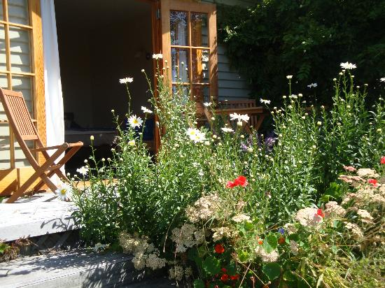 Featherstone B&B: Cottage garden outside the guest room
