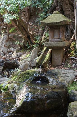 The Westin Miyako Kyoto: Garden