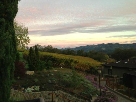 Wine Country Inn & Cottages: View from our balcony--so gorgeous!