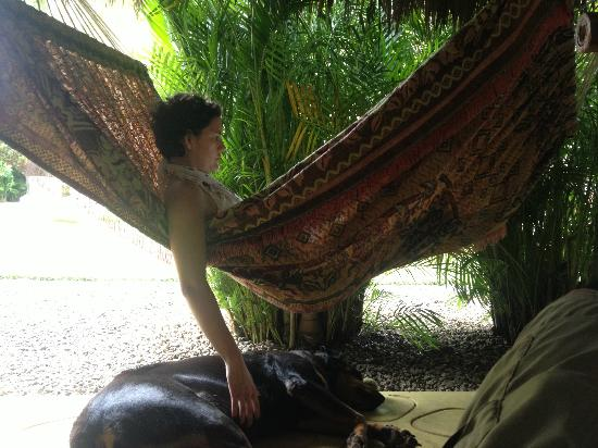 Hooked Cabarete: Wife enjoying some R&R as one of the Hooked dogs keeps her company.