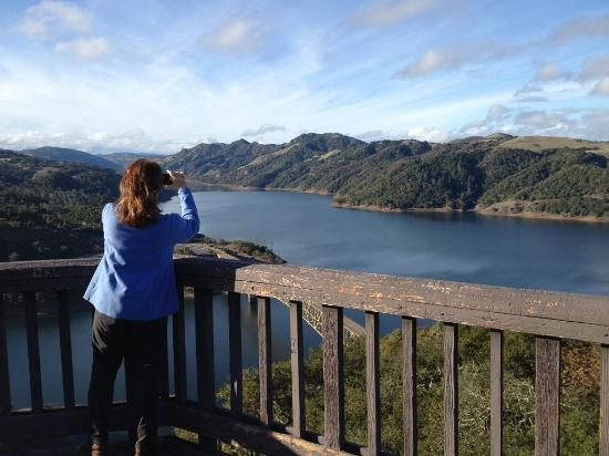 BEST WESTERN Dry Creek Inn: Shooting Lake Sonoma