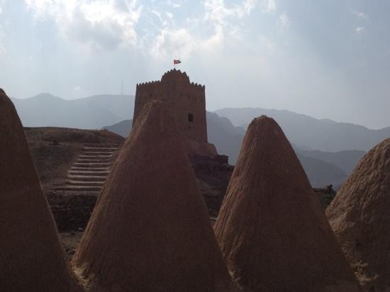Al Hayl Castle: Castle