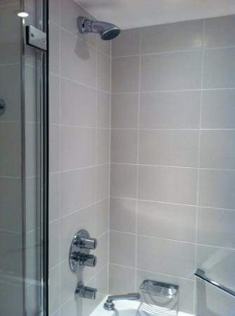 Royal Garden Hotel: shower heads