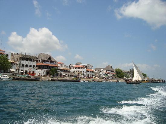 Lamu Old Town : Porto di Lamu
