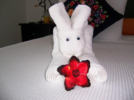 Casa Sirena Hotel : The Housekeeping Staff Are ARTISTS
