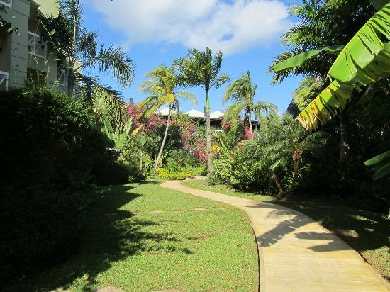 Sandals Negril Beach Resort & Spa: garden