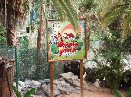 Oasis Village : Oasis Park