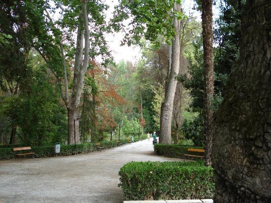 Balneario de Alhama de Granada Hotel: Alrededores