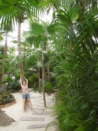 Be Tulum Hotel: in the jungle...