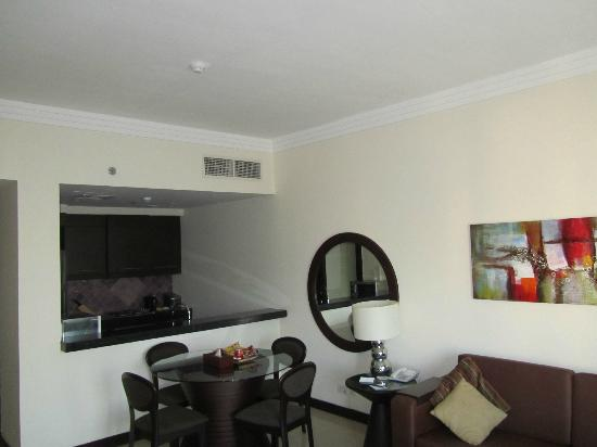 Flora Park Deluxe Hotel Apartments: Kitchen & Lounge