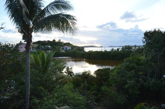 Garden by the Sea B&B: From the deck looking out at the salt pond and ocean beyond