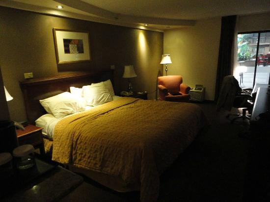Garden Plaza Hotel: King Room