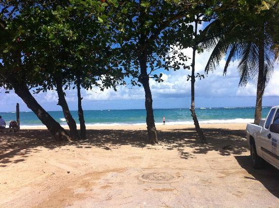 Acacia Boutique Hotel: Beach by hotel