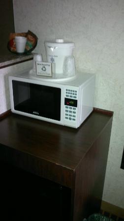 Crystal Inn Hotel & Suites Salt Lake City - Downtown: microwave