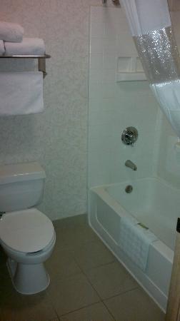 Crystal Inn Hotel & Suites Salt Lake City - Downtown: shower