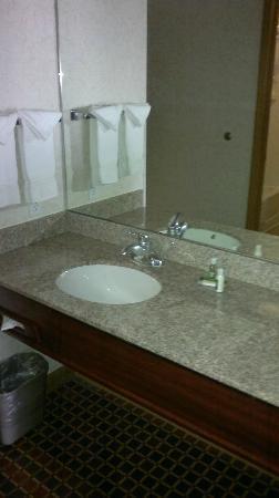Crystal Inn Hotel & Suites Salt Lake City - Downtown: sink