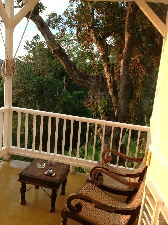 Strawberry Hill: view from our porch