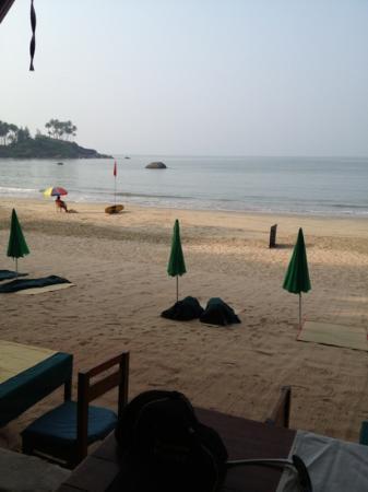 Art Resort Goa: view from bar/ restaurant