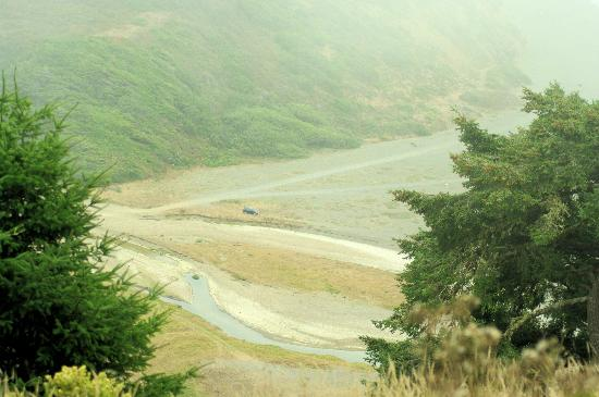 Mendo Insider Tours: During the summer, Evan told us that this river and beach will have Elk eating the river grass.