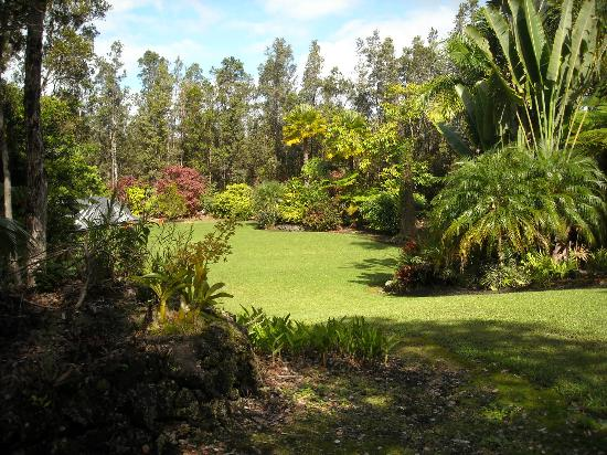 Hale Moana Bed & Breakfast: The North Garden at Hale Maona