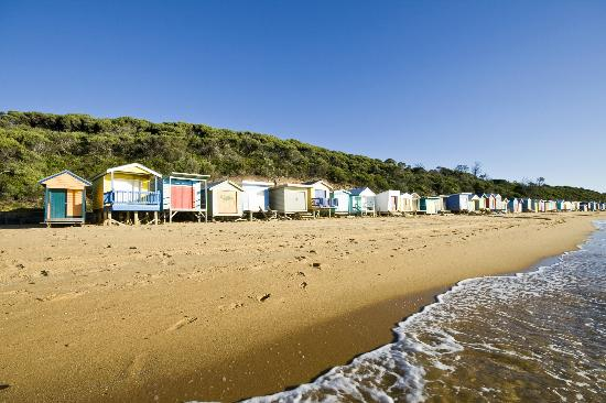Mt Martha Bed and Breakfast By The Sea: Beach
