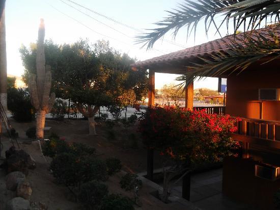 Hotel Riviera Coral : JARDIN EN EL HOTEL