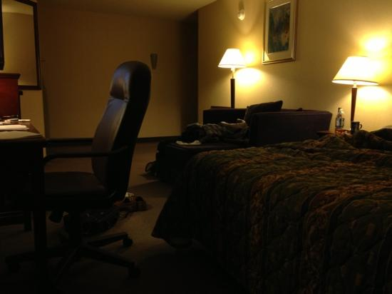 Travelodge Hotel Vancouver Airport: one queen bed
