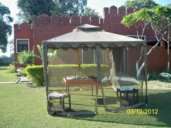 Green Acres Haveli and Retreat: Lunch at Backyard Lawns