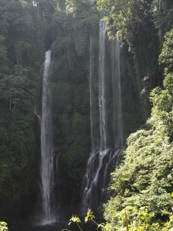 Sekumpul Waterfalls: sekumpul waterfall