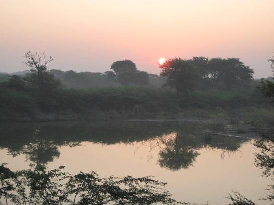 ‪Khijadiya Bird Sanctuary‬