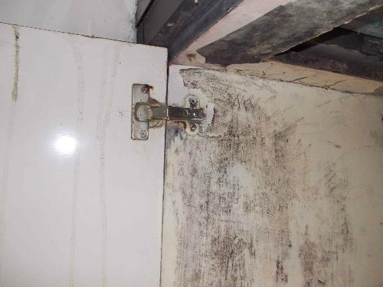 Amansari Villa: Extensive mould in kitchen cupboard