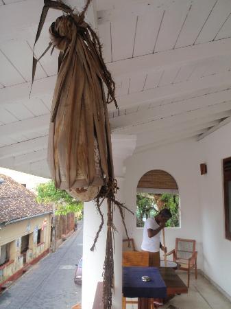 Pedlar62 Guest House: front balcony