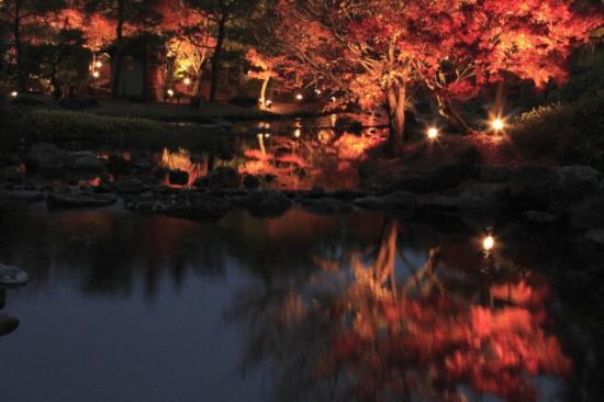 Shirotori Garden : kouyou