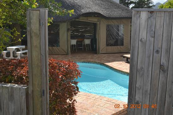 Chapman's Peak Bed and Breakfast: pool
