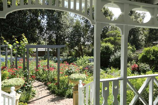 Holmwood Guesthouse: Overlooking Holmwood's cottage garden.