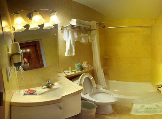 Kings Hotel: Душ и туалет
