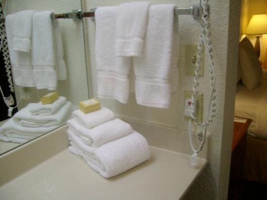 Sonesta ES Suites Flagstaff: Plenty of towels - yay!