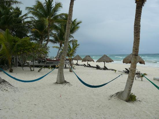 La Zebra Colibri Boutique Hotel: View north from beach cabanas