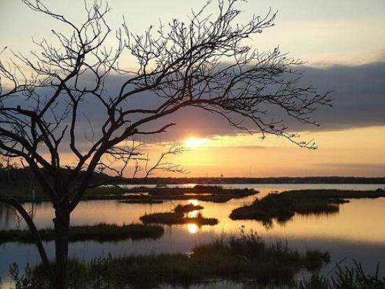 Cattus Island County Park: Sunset at Cattus can be spectacular.