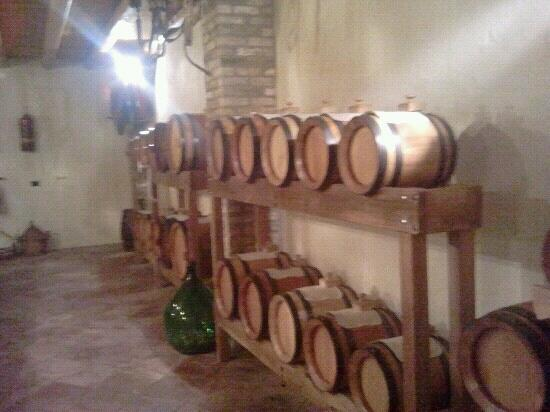 Ristorante Al Cardellino: acetaia..botti con aceto che invecchia